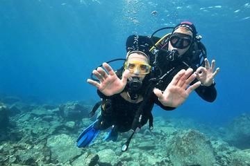 Discover Scuba Diving Beginner...
