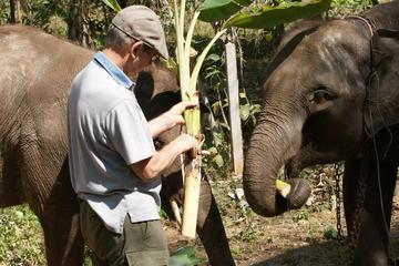 象使いの一日を体験