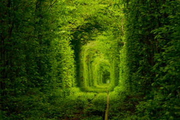 Private Tour to Tunnel of Love from Kiev