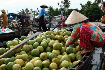 Mekong Delta 3-Day And Speed Boat To...