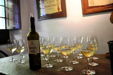 Setubal Peninsula Wine Tour - Sesimbra Azeitao and Arrabida Private...