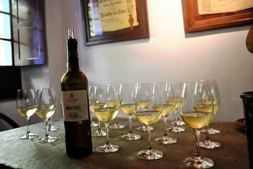 Wijntour op schiereiland Setúbal - privétour naar Sesimbra, Azeitão ...