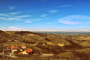 Piedmont Wine Tasting and Cellar Tour from Bra or Alba