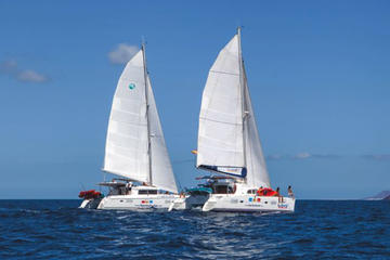 Catamaran and Speedboat Sailing Day...