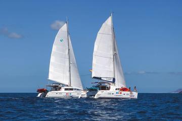 Excursion de 4heures en voilier à...
