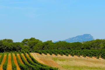 Excursão de descoberta vinícola de dia inteiro para grupos pequenos...