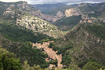 Excursão vinícola em Languedoc para grupos pequenos e visita ao...