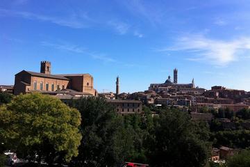 Excursión en coche privado por la Toscana: visita de un día a Siena y...