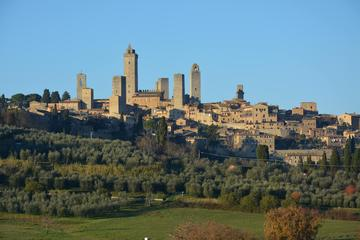 One Way Private Transfer: Florence to Rome with Visit to San Gimignano and Siena
