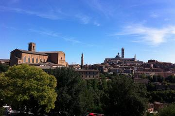 Private Tuscany Drive Excursion: Siena and San Gimignano Day Trip from Florence
