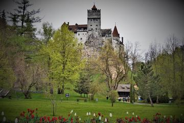 Private Tour: Bran Castle and Rasnov...