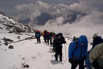 Randonnée de 6jours au Kilimanjaro au départ d'Arusha avec camping...