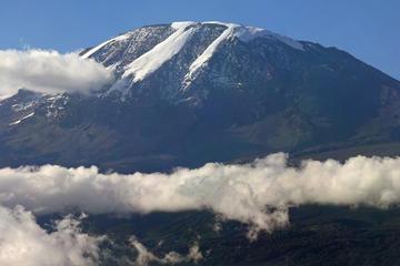 Randonnée de 6jours, route de Barafu camping au Kilimandjaro Machame...