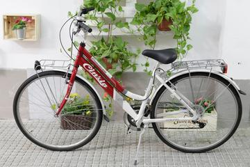 Rent city bike Seville