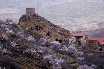 Full-Day Private Tour to David Gareja Complex from Tbilisi