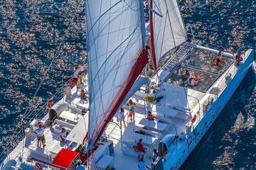 Croisière festive en catamaran à  Brac et Bol avec repas et boissons...