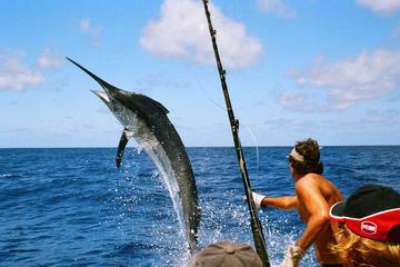 Excursión de pesca con todo incluido y almuerzo desde Split