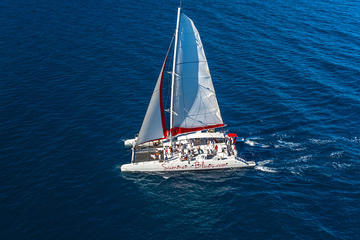 Navegación en catamarán con fiesta a Brac y Solta, con comida y...