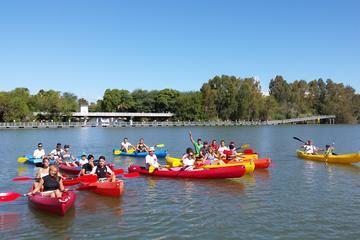 Excursión en kayak de 3 horas en Sevilla en el río Guadalquivir