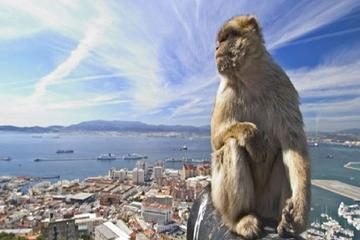 Gibraltar Full Day Tour from Seville