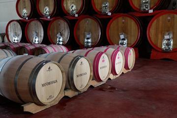 Excursión para grupos pequeños: recorrido vinícola por la toscana a...