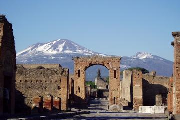 Tour per piccoli gruppi: tour di un giorno intero di Pompei e Napoli