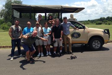 Safari au parc Kruger: excursion guidée d'une journée au départ de...