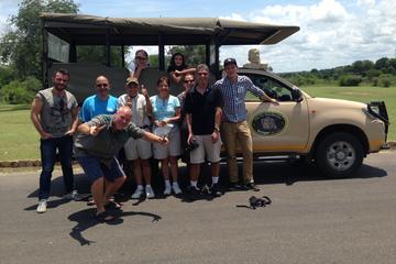 Safari en el Parque Kruger: Recorrido de un día guiado desde Nelspruit