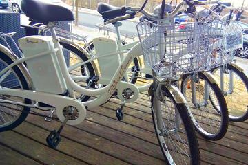 Tour in bicicletta elettrica per piccoli gruppi delle attrazioni di