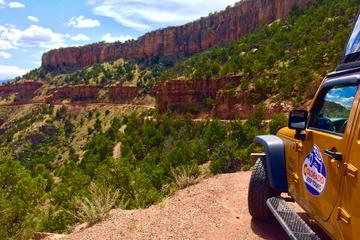 Gold Belt Scenic Byway Jeep Tour from ...
