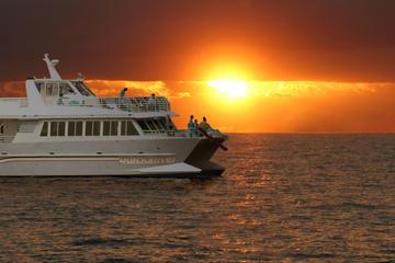 カリプソに乗船するサンセットディナークルーズ