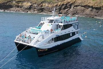 Aventura de buceo de superficie en Molokini a bordo del Calypso
