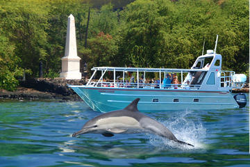 Formule combinée: baie de Kealakekua, plongée avec les dauphins...