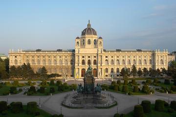 Kunsthistorisches Museum Wien und kaiserliche Schatzkammer Wien