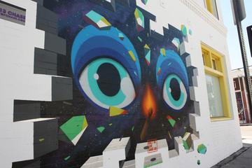 Excursão de bicicleta de arte de rua...