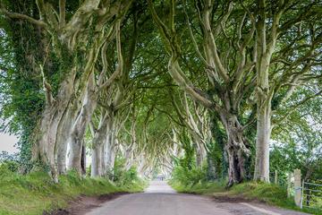 Visite des lieux de Game of Thrones dont la Chaussée des Géants au...