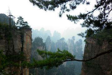 すべてのハイライトアトラクションへの4日間のZhangjiajieプライベー…