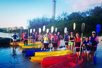 1-Hour Single or Double Kayak Hire on Golden Beach, Caloundra