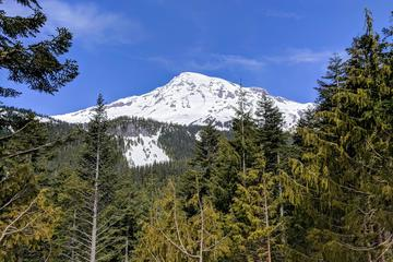 Mount Rainier National Park - Luxury...