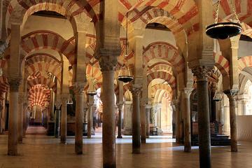 Private 9-Hour Tour of Cordoba from Granada