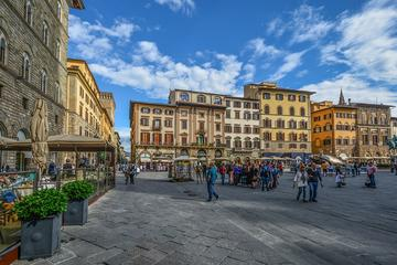 Private Shore Excursion to Florence from Livorno with private driver-guide