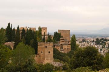 Privater geführter Spaziergang in Granada