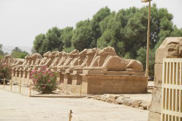 Private Overnight Tour from Safaga to Luxor
