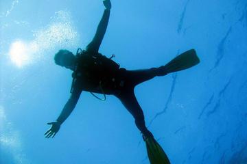 Introductie duik in de zee