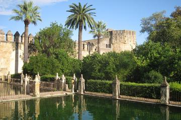 Excursão a pé de 3 horas pelos monumentos de Córdoba