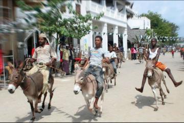 4-Day Lamu Island Excursion from Mombasa