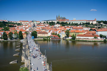 Privat, tilpasset heldagsomvisning i Praha: borgen i Praha og...