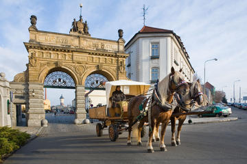 Private Custom Tour to Pilsen from Prague