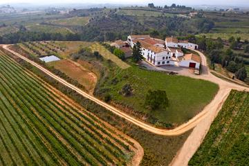 Viticoltura e degustazione di vini di 3 ore da Barcellona