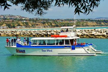 Day Trip Luxury Catamaran Sunset and Wine Cruise from Dana Point near Dana Point, California